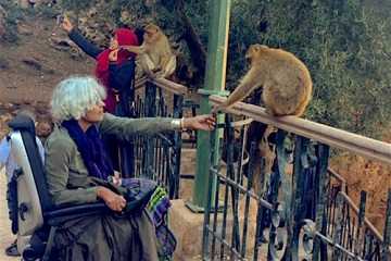 Woman feeding monkey from wheelchair at the waterfall